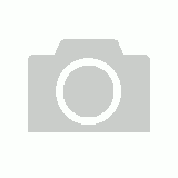 Brown Bear (Small)